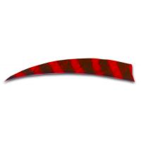 Feder rot (Barred)